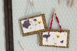 Pressed Flower Craft
