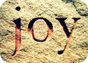 Quest for Joy