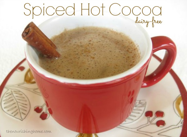 Spiced Hot Cocoa (dairy-free option)