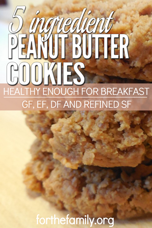 These easy-to-make cookies are both delicious and healthy. These cookies are a win-win! Feel good about what's in them, and your kids get cookies for breakfast! Unless you are allergic to nuts, they are basically allergy friendly with no wheat, no dairy, no eggs, and no refined sugar! And what is that secret ingredient??? Lentils!