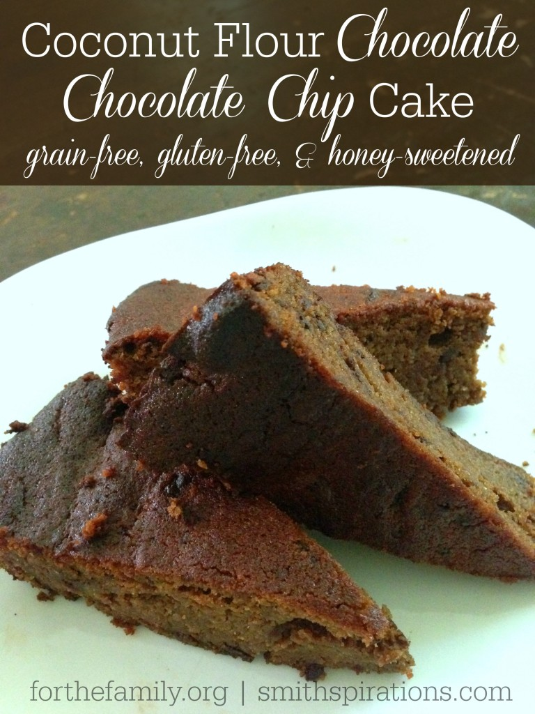 Looking for a sweet treat?? Look no further! Coconut Flour Chocolate Chocolate Chip Cake, Grain-Free, Gluten-Free, and Honey-Sweetened!