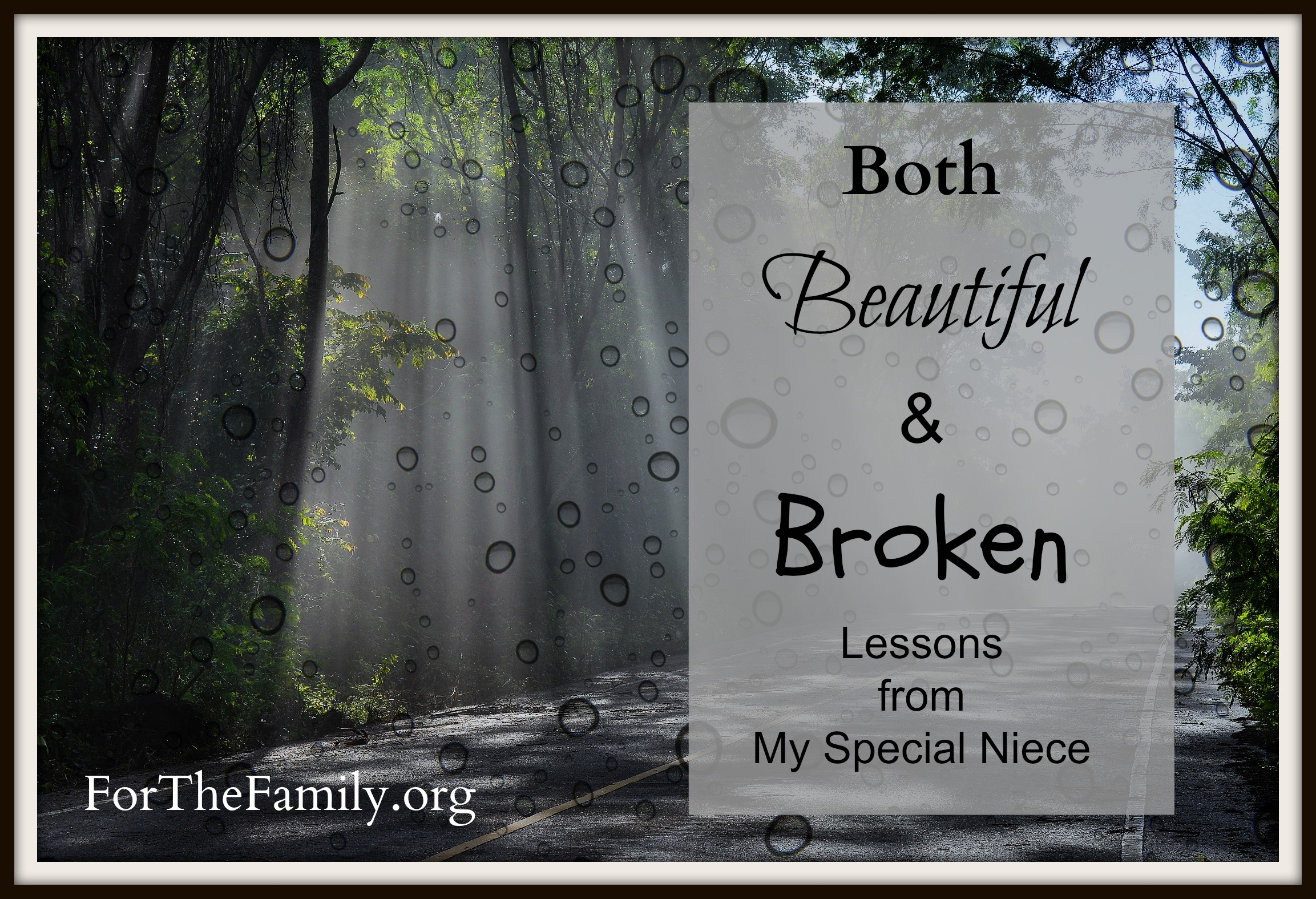 Both Beautiful & Broken {Lessons from My Special Niece}