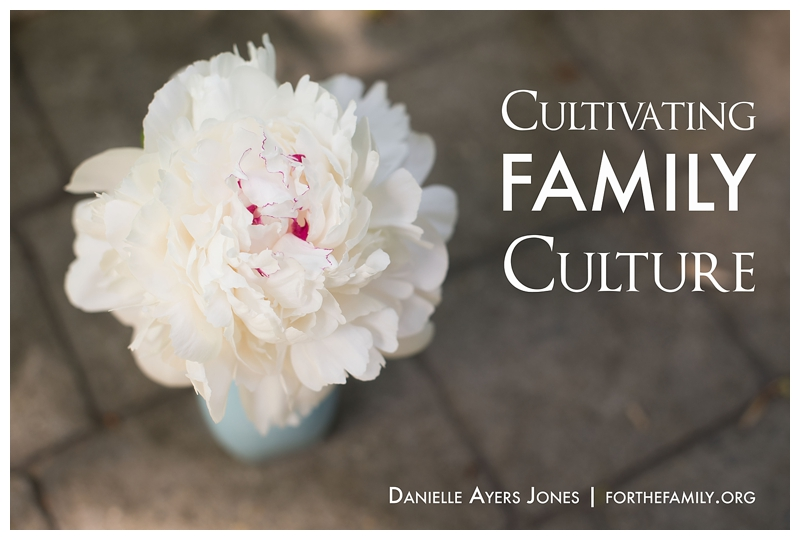 What's the culture of your family? Even if you don't realize it, you have one. Its worth your time to consider what you are passing down to the next generation of your family and beyond. Why not take time this summer to make an intentional plan to pass on your faith?