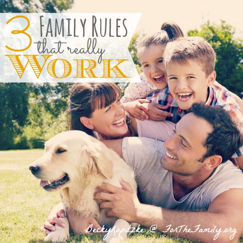 Rules. The family glue we need so desperately but struggle to create and enforce. What boundaries and standards ARE truly important for our kids to grasp? Today, we are demystifying rules: how to make them and keep them, and gain peace for the whole family!