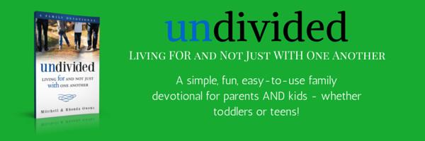 undivided banner