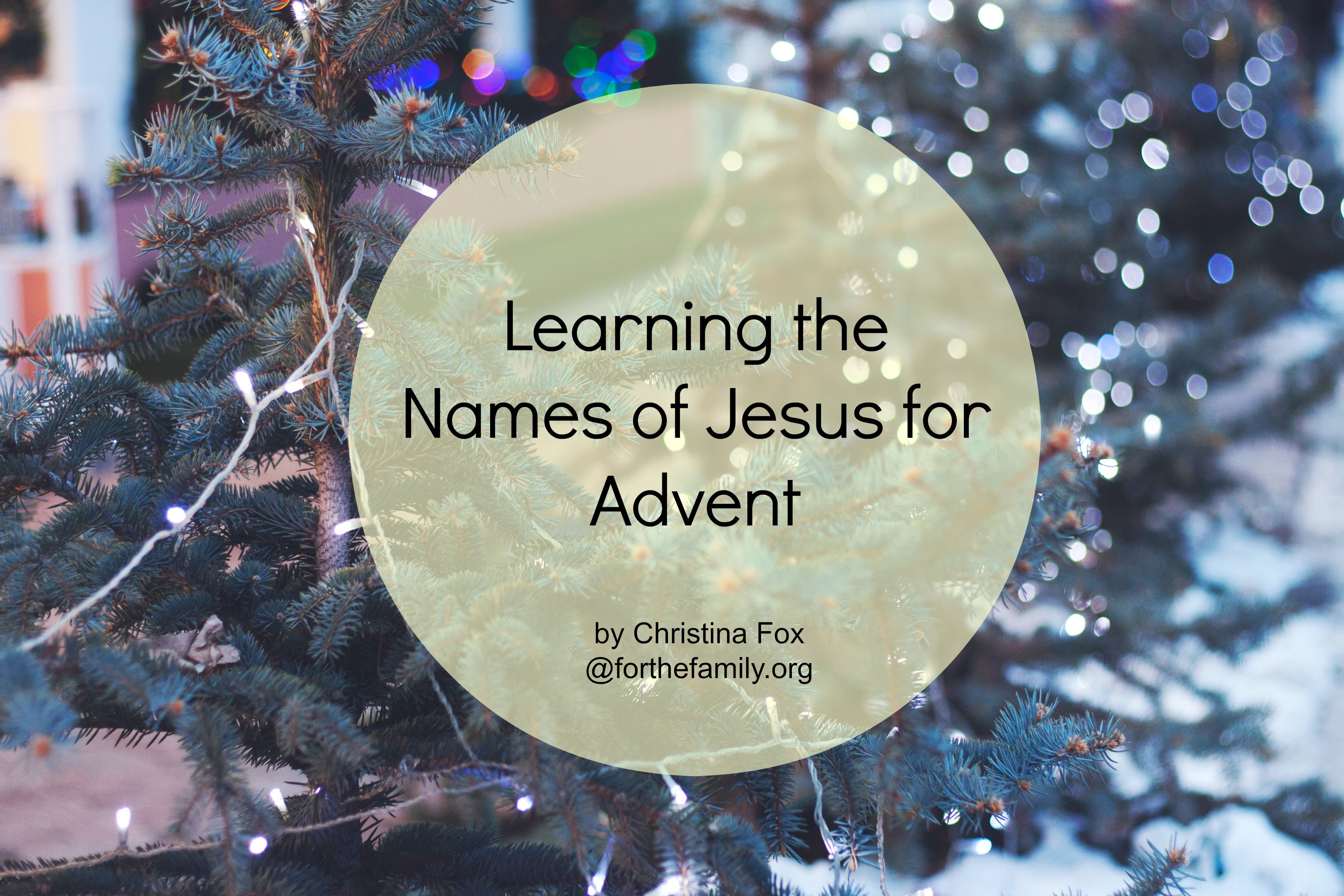 Learning the Names of Jesus for Advent - for the family