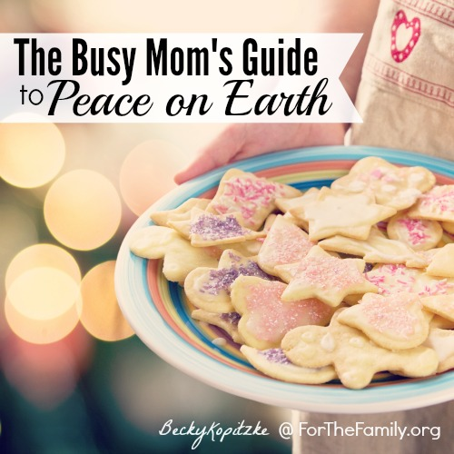 Have you fallen prey to the notion that everything that transpires in your home this holiday is all up to you? That can be a whole lot of pressure for a mom or dad to undertake this time of year! Tis the season for peace on earth, and even when you're a parent, its your job to grab hold of it!