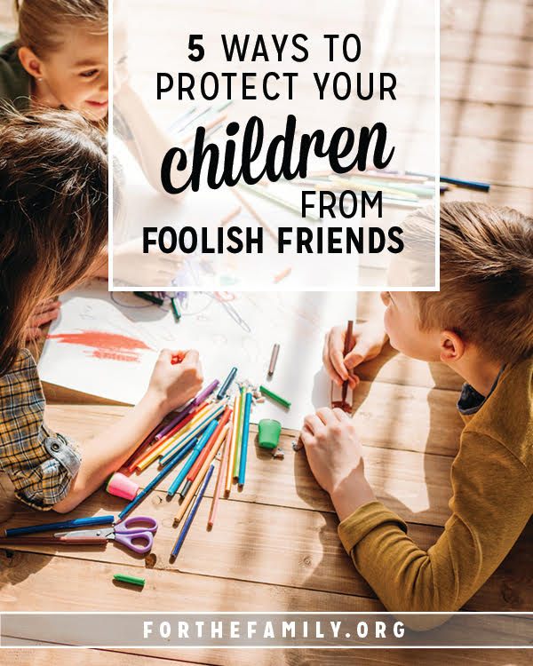 Who influences your children? Friends can make a big impact! Learn how to protect and give your children a godly vision for friendship that will bless them throughout their lives today!