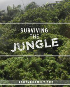 Surviving the Jungle