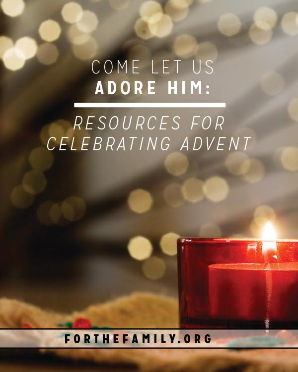 How are you celebrating advent this year? These resources are wonderful additions to help you engage in a heart and season of anticipation this year.