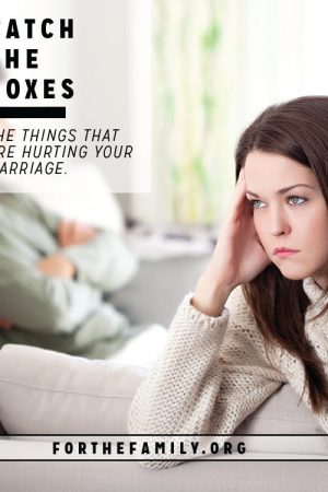 Catch the Foxes {the things that are hurting your marriage}