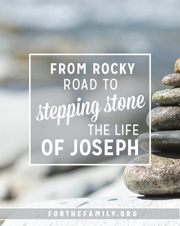 What difficulties are you facing? Are there obstacles in your path? Before discouragement and disappointment set in, consider whether the rocks in your way may actually be stepping stones to the will of God in your life. He may be writing another course for your family,