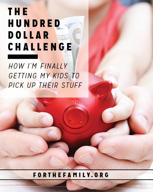 Does clutter feel like it is overtaking your home, squeezing out your sanity and sweet family time? We've been there too! But, this challenge for your children is so creative, it might just change the course of cleaning up forever.