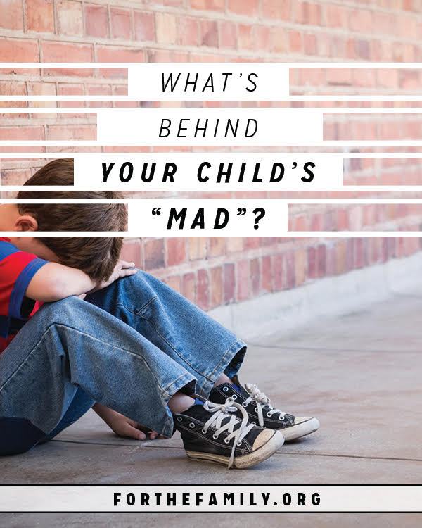 Do your children struggle with big emotions? Even bouts of anger? As parents its easy to be frustrated and want to see them exhibit self control, but all those feelings also give us a hint at something deeper. What's beneath your child's mad? And how can you help them through and connect to their hearts.