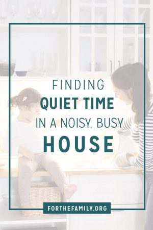 Finding Quiet Times in a Noisy, Busy House
