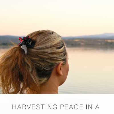Harvesting Peace in a Season of Unrest