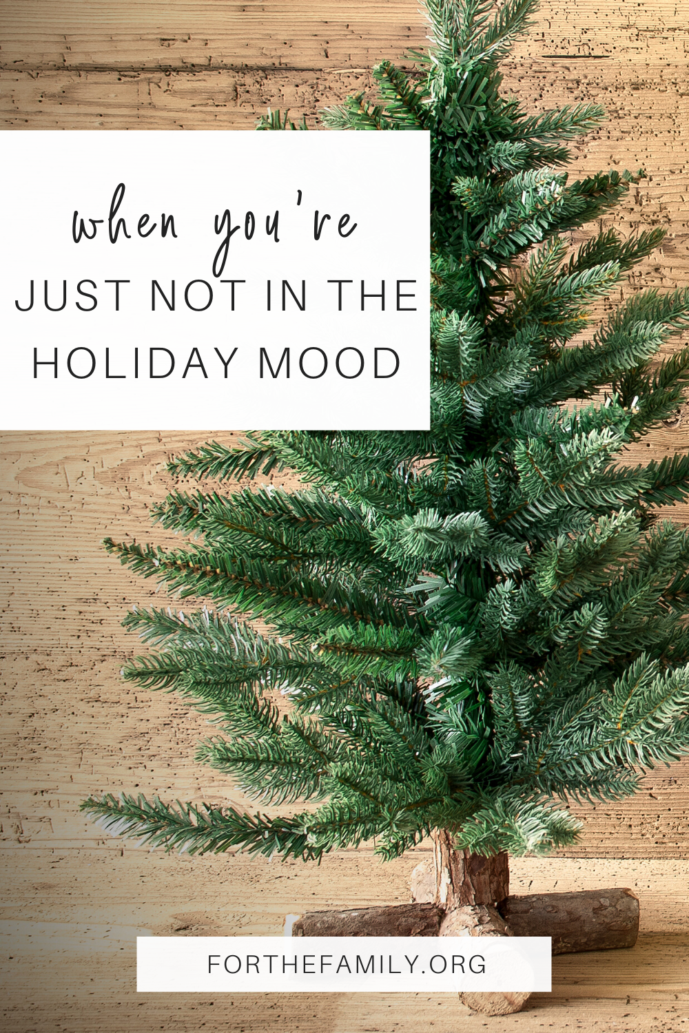 How can we survive the holidays when we are hurting? Whether it is job loss, illness, divorce or another circumstance there is hope in the midst of your hard stuff. Here's where to find it today!